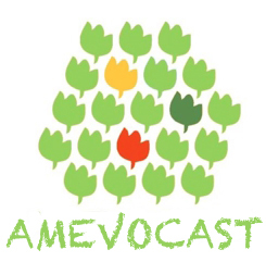 amevocast