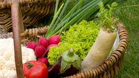 Proyecto de Ley de la cadena alimenticia