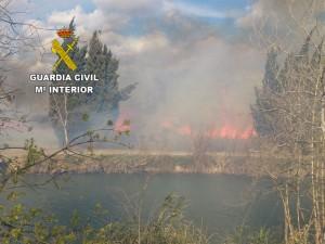 "La Guardia Civil detiene al autor del incendio en el paraje natural ""El Clot de la Mare de Deu"" de Burriana"