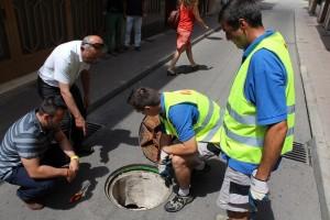Vila-real intensifica los tratamientos contra cucarachas y mosquitos para evitar la aparición de plagas en verano