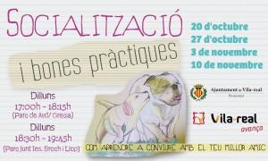 Proximidad impulsa sesiones de socialización de perros en los parques caninos de Vila-real para mejorar la convivencia