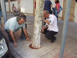 """Vila-real da con la """"solución definitiva"""" a los alcorques con una aplicación propia y novedosa que se implantará en toda la ciudad"""