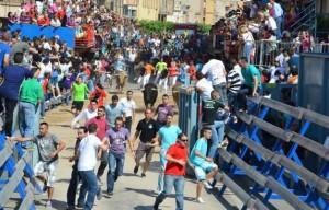 Herido leve en el «bou per la vila» de esta tarde en Vila-real