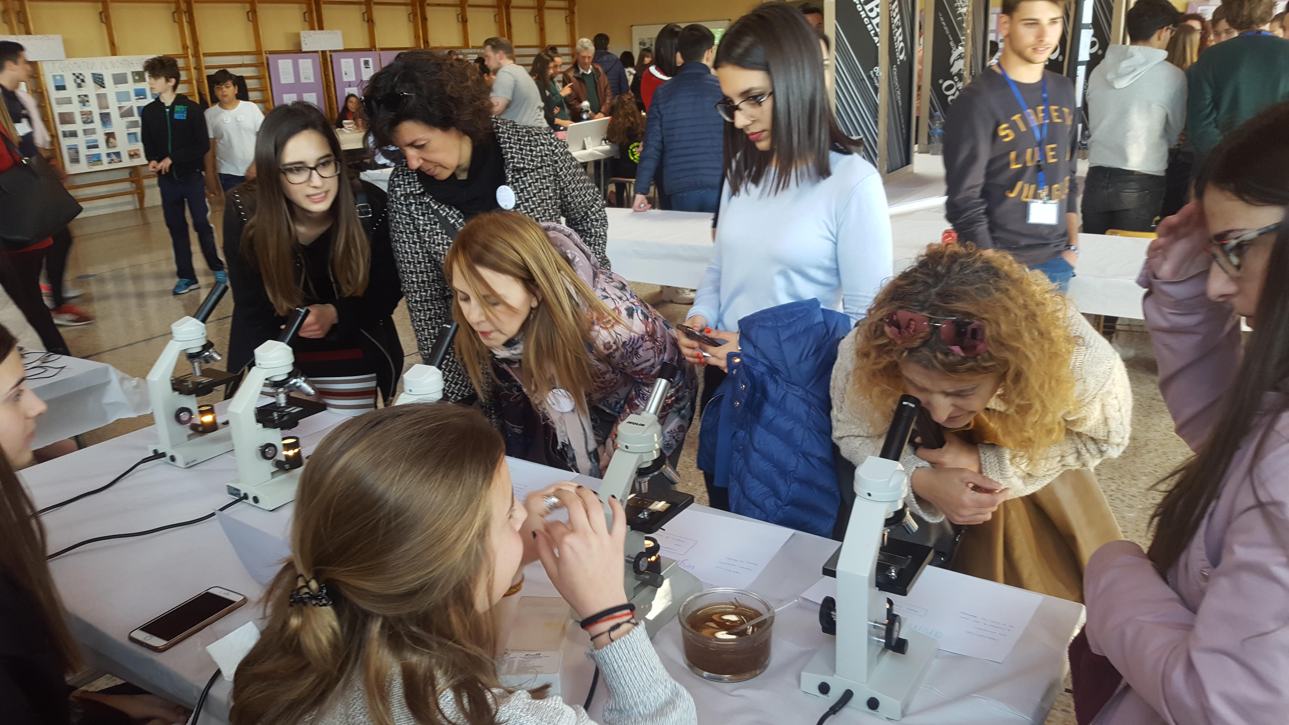 El colegio Santa María celebra su primera Feria de la Ciencia