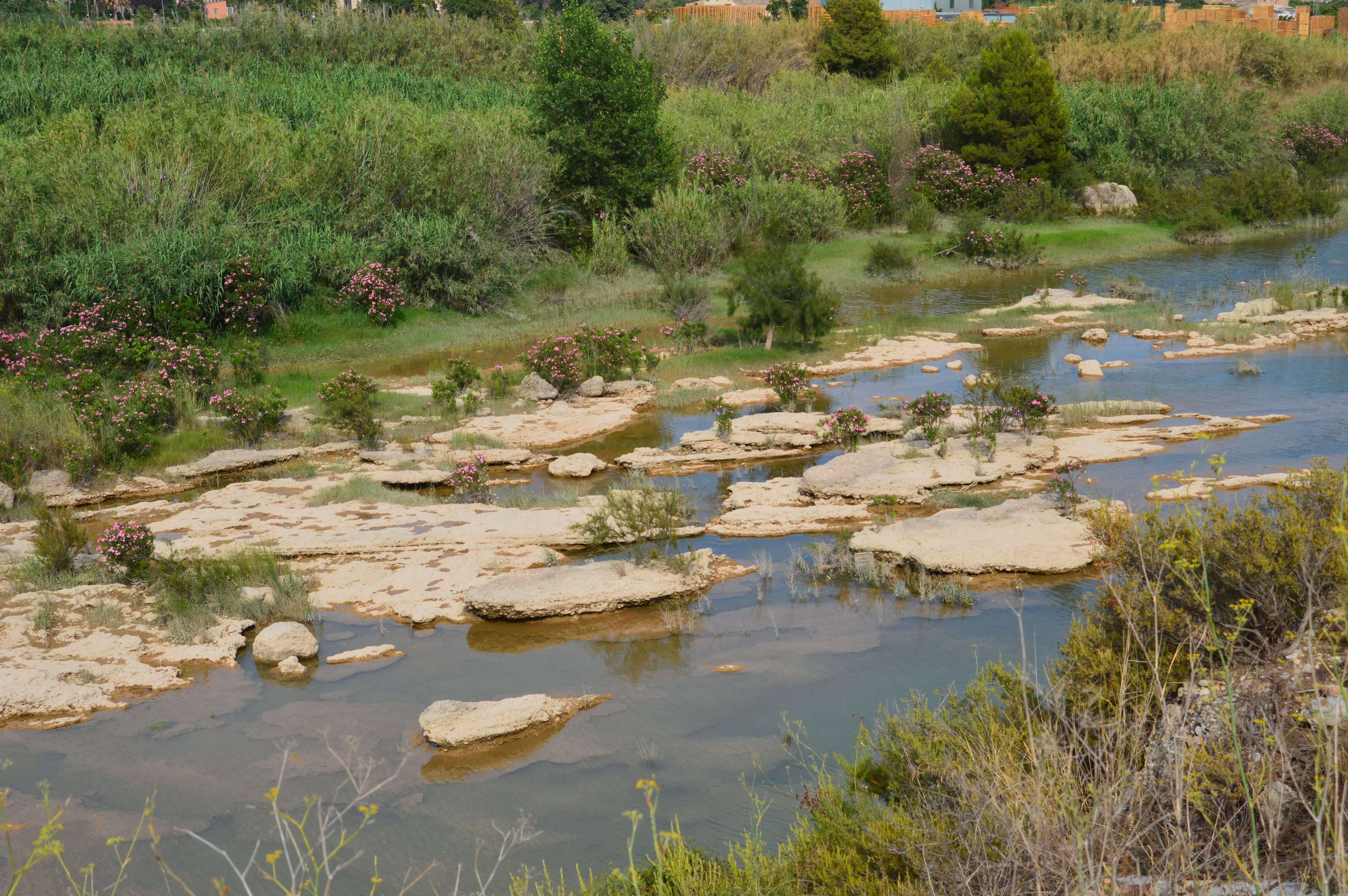 Tres meses de caudal ecológico en el tramo final del Millars.