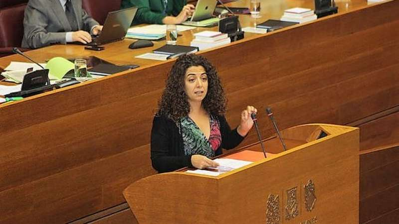 Portavoz de Educación del PSOE a Les Corts, Ana Besalduch