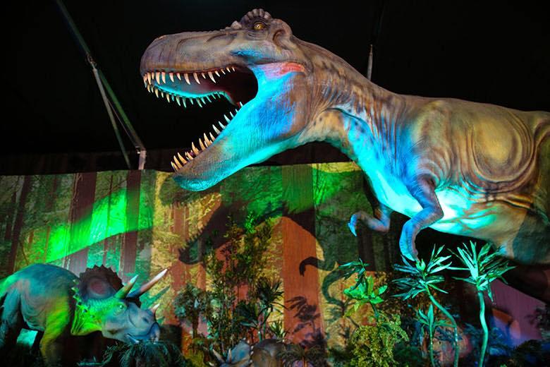 Entrevista al responsable de comunicación de Dinosaurs Tour, Eneko Velasco