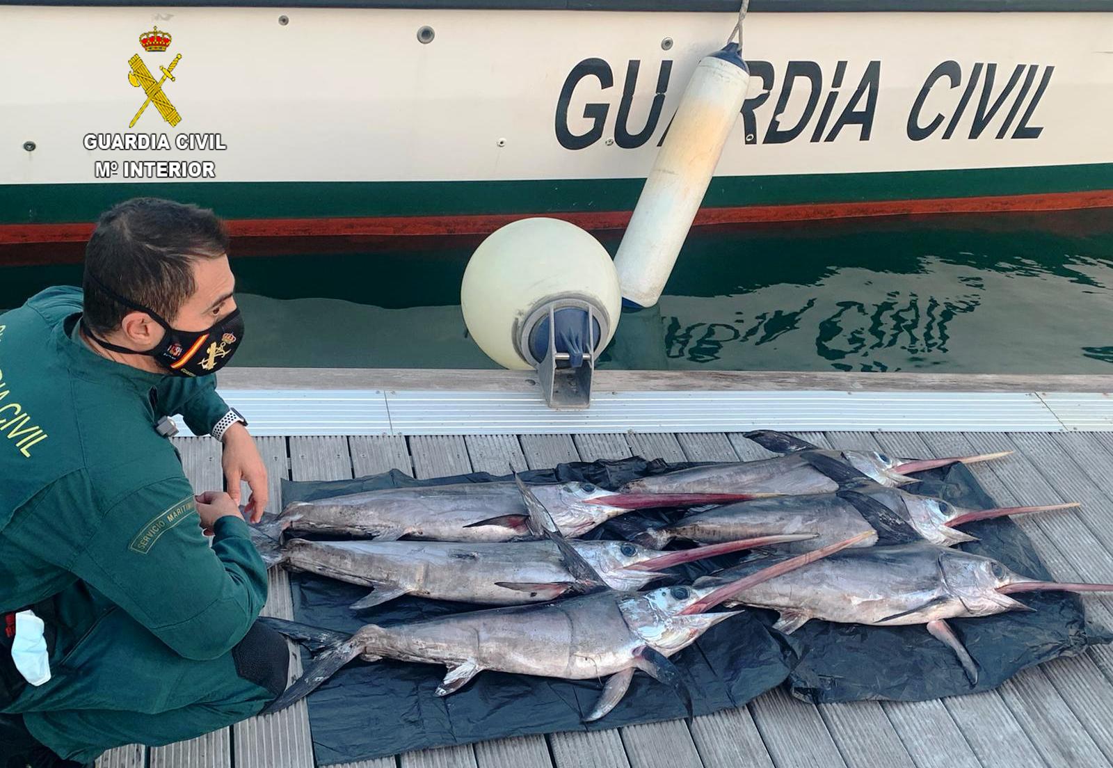 La Guardia Civil incauta a una embarcación profesional de pesca seis peces espada de talla antirreglamentaria a unas 15 millas de las Islas Columbretes