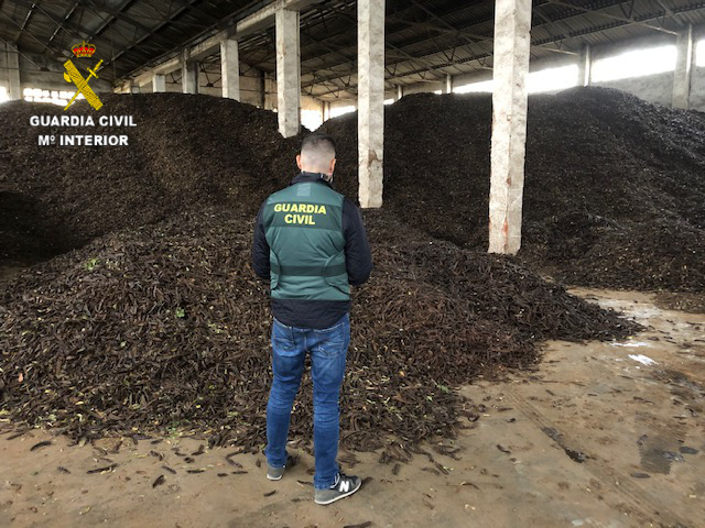 Detenidas dos personas e investigadas otras ocho en dos operaciones por 17 delitos de hurto de algarrobas en explotaciones agrícolas en el Baix Maestrat
