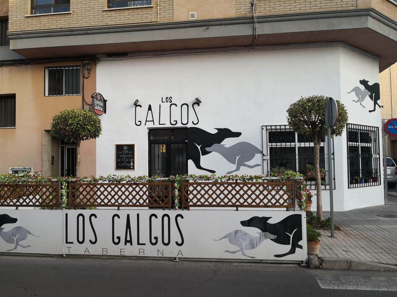 Entrevista a la Taberna de Los Galgos, Silvia Cerverá