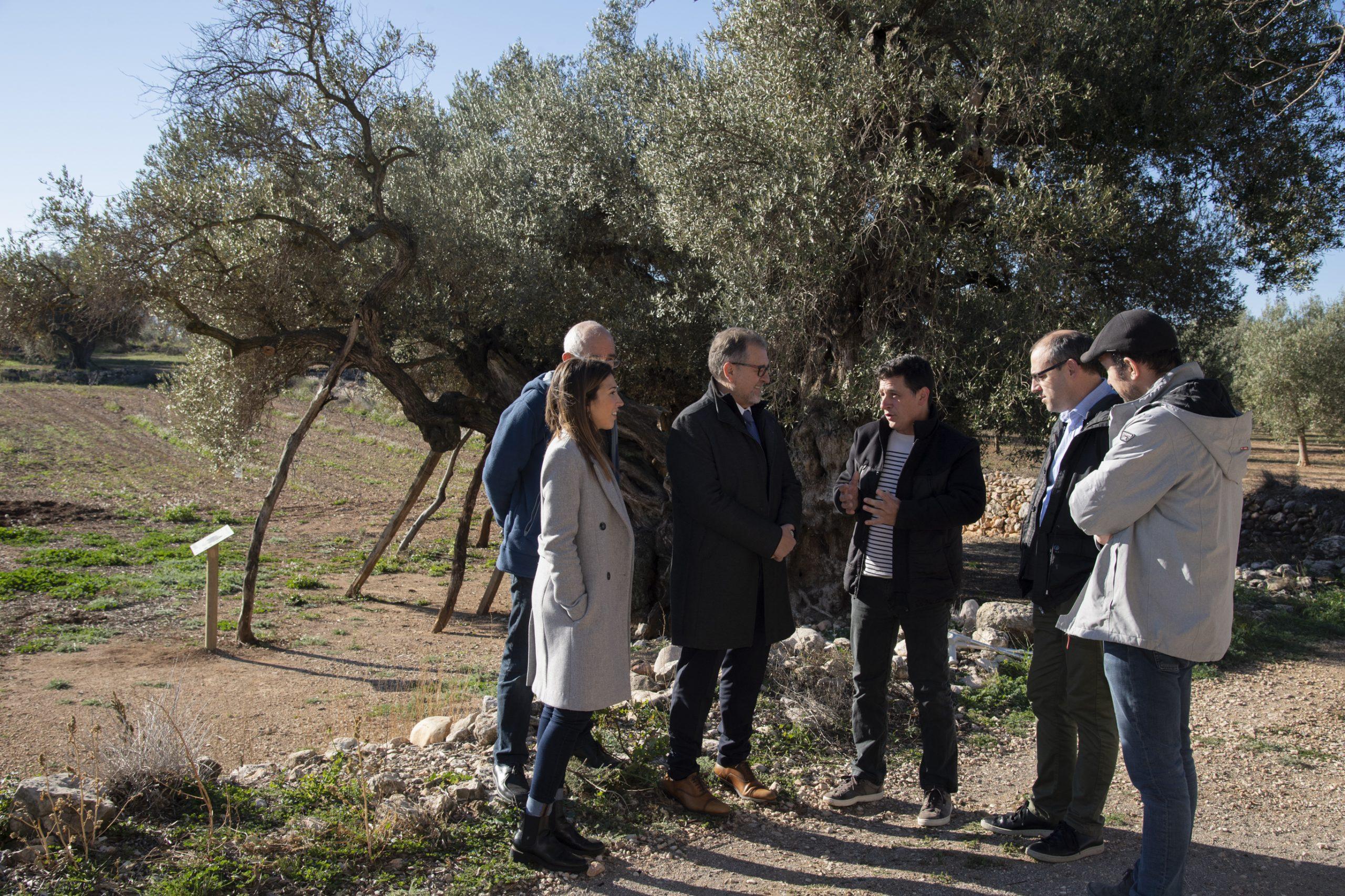 La Diputación de Castellón destina más de 52.000 euros a la conservación y mejora de 16 parajes naturales de la provincia