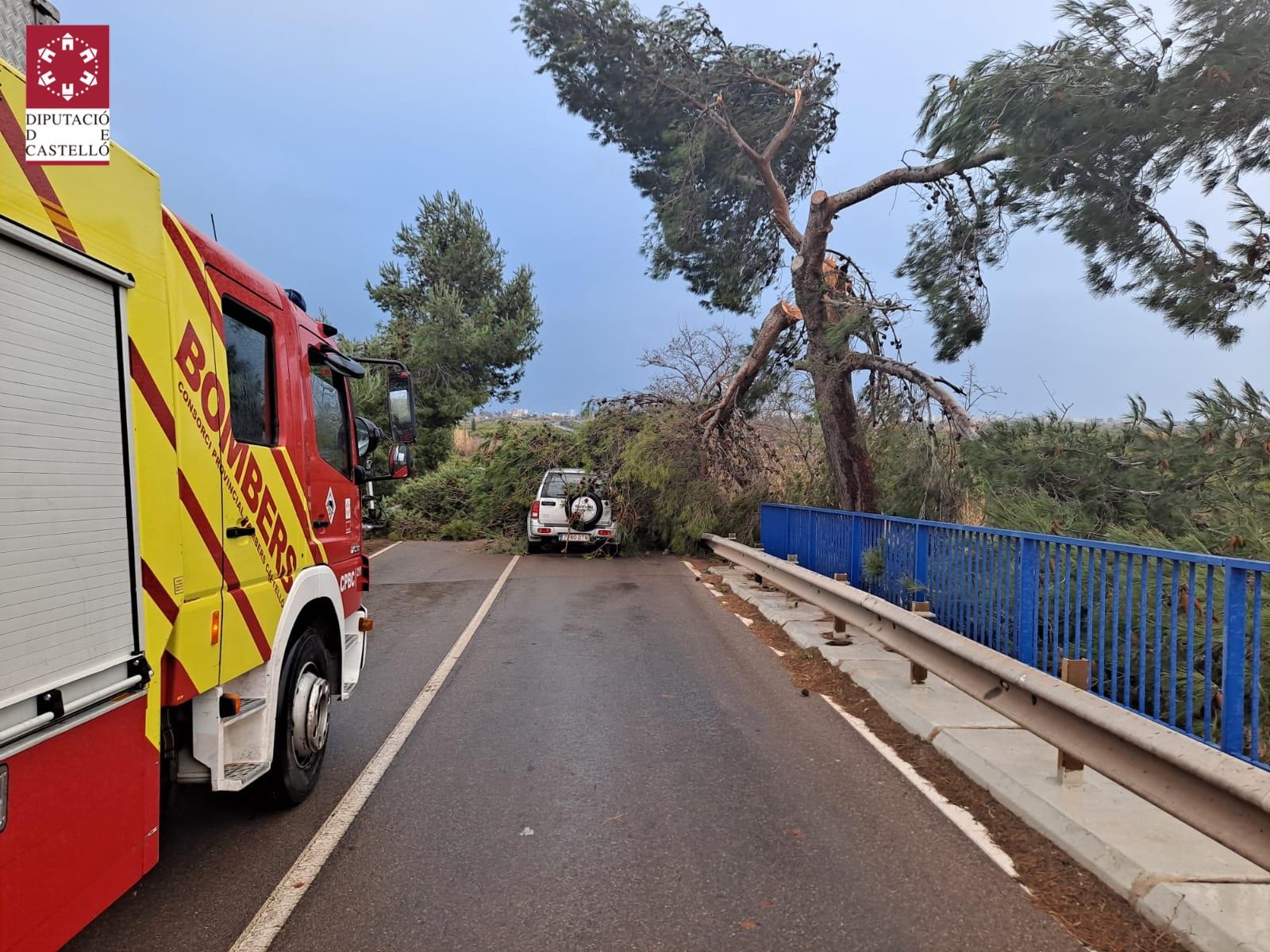 Los Bomberos de la Diputación de Castellón efectúan 33 actuaciones a lo largo del día a causa del temporal de viento 'Hortense'