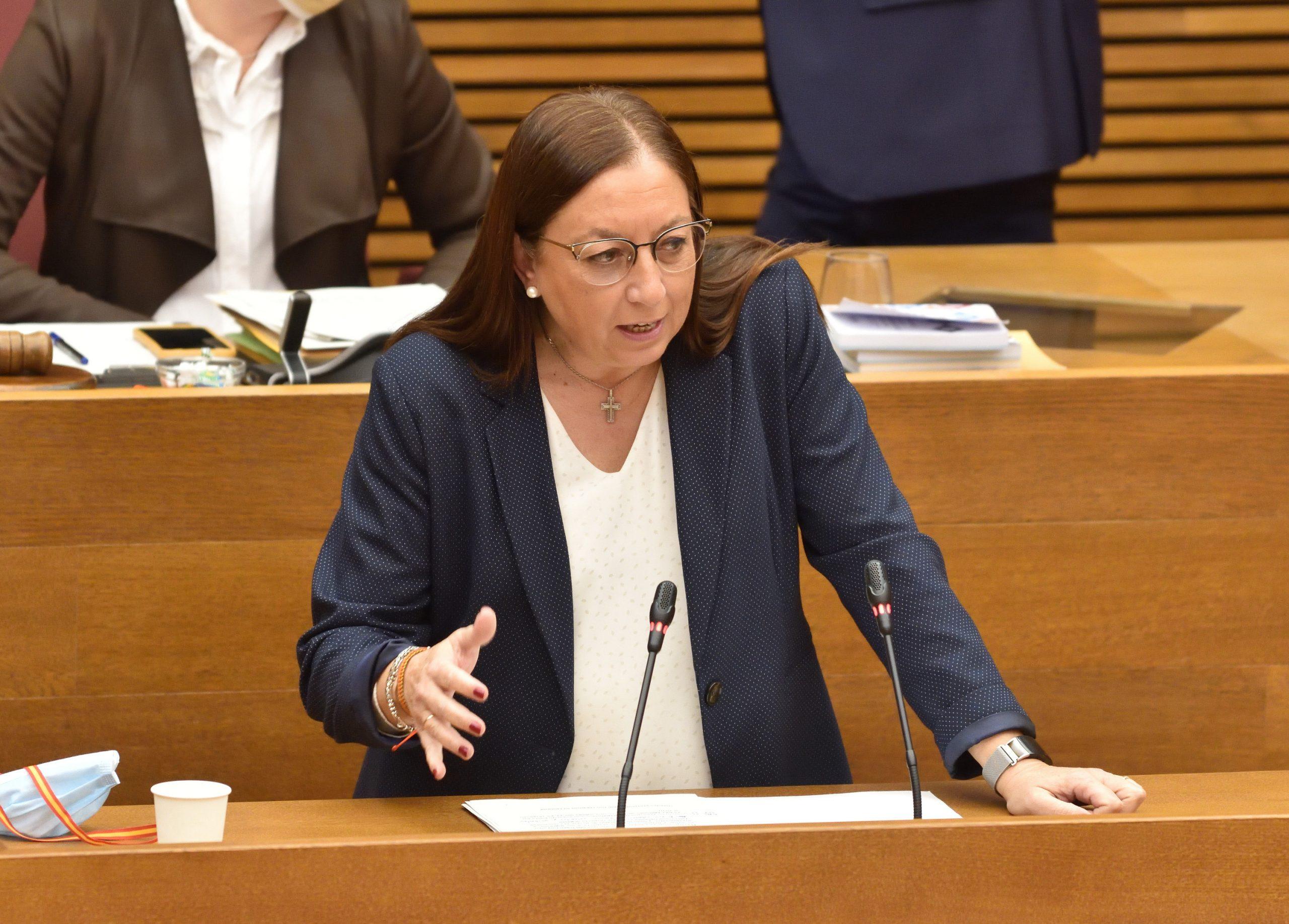 Massó (VOX) insta al conseller de Economía a «eliminar el despilfarro del Botánico con 20 millones en asesores «
