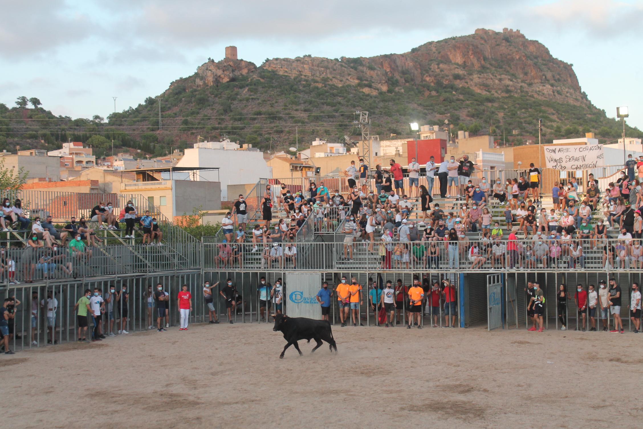 Recaudan 7.060€ para la AECC en los espectáculos taurinos en las fiestas de Almenara