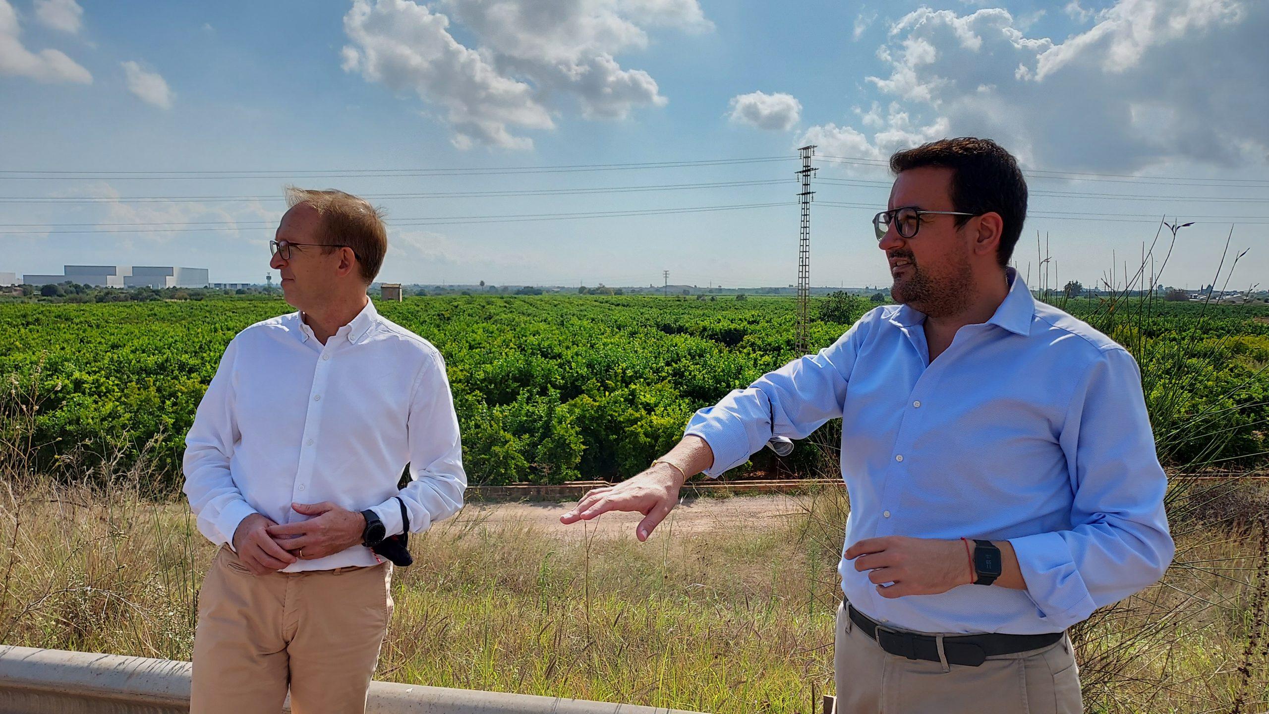 El PP de Vila-real pide más vigilancia en el campo en el inicio de la campaña de recogida de la naranja