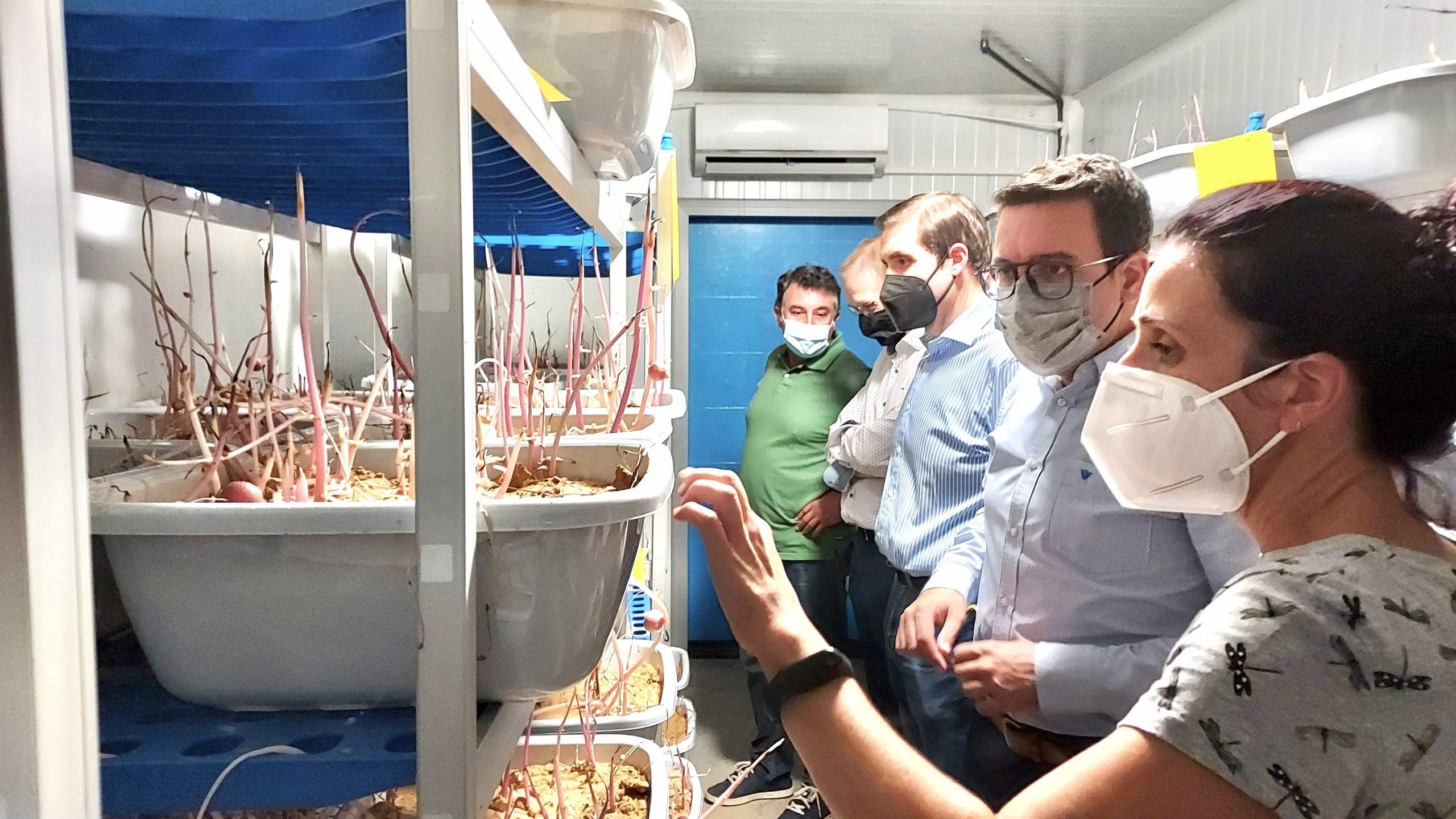 Adrián Casabó visita las instalaciones de la Cooperativa Católico Agraria Vila-real