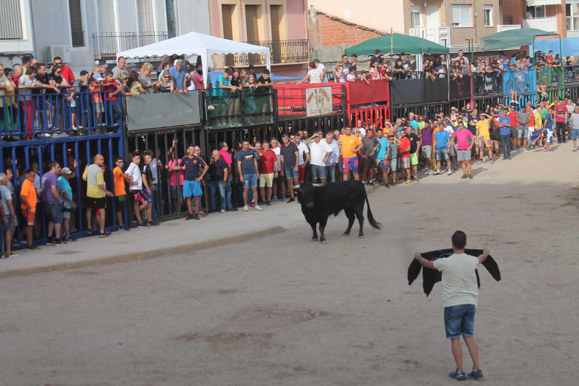 Almenara recuperará el bou per la vila entre el 3 y el 5 de diciembre